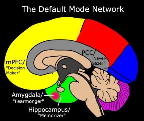 """""""Default Mode Network"""" derivative of work by NEUROtiker / [GFDL, CC-BY-SA-3.0 or CC-BY-SA-2.5-2.0-1.0]"""