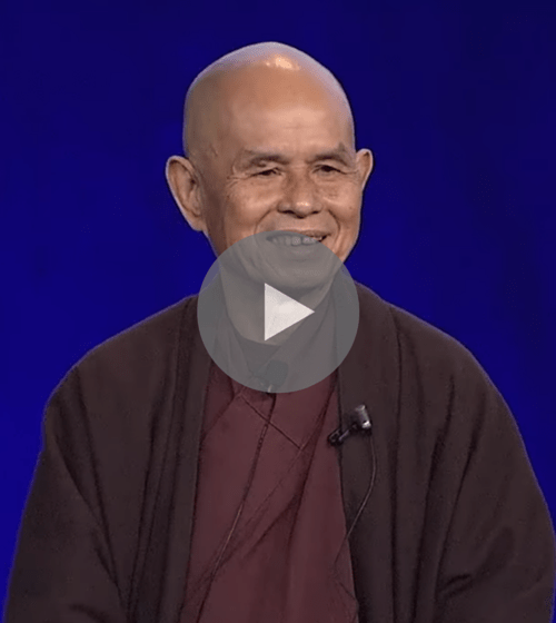 Mindfulness Talk By Thich Nhat Hanh