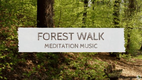 Forest Walk Meditation Music