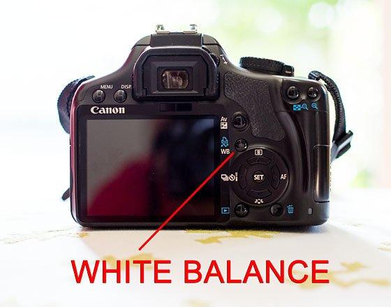 White Balance 101 16 Daily Mom Parents Portal
