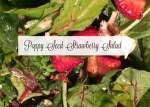 My Go To Strawberry Poppy Seed Salad