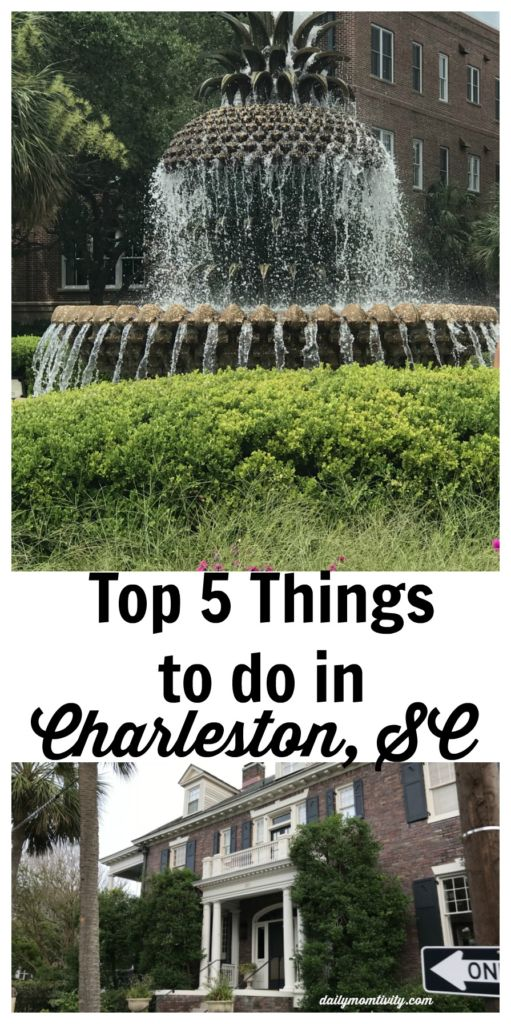 Top 5 Things to Do in Charleston, SC! All of my favorite spots including Callie's Hot Little Biscuits, Rainbow Row and where to shop!