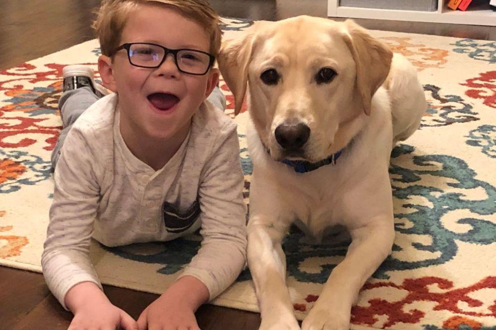 Our Favorite Dog Essentials for Man's Best Friend