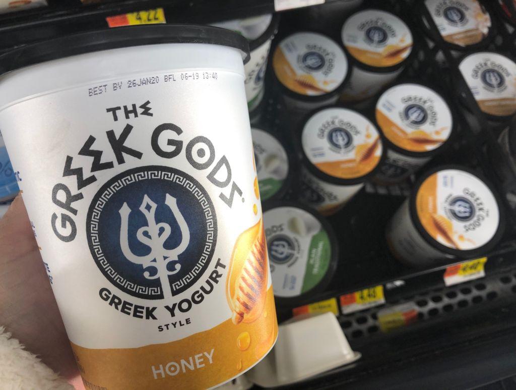 Greek Yogurt Fruit Dip