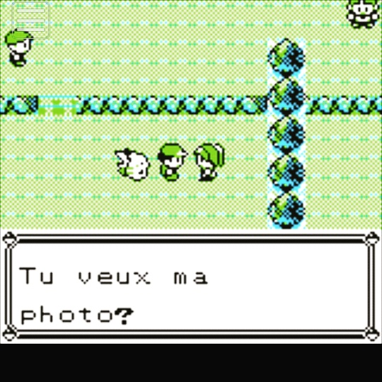 Incohérence dans Pokémon.jpg