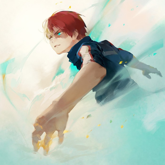 Shoto Todoroki Hero Academia.jpg