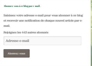 Modifier l'article ‹ Daily Moogle — WordPress.com - Google Chrome_3