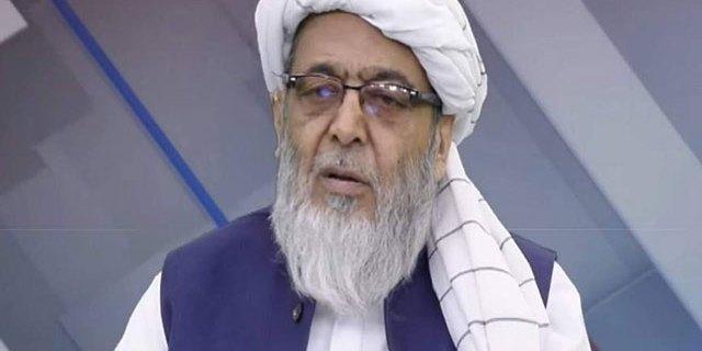 حافظ حسین احمد
