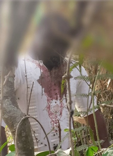45-year-old tailor commits suicide in Osun [photo]