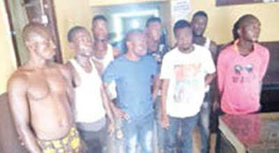 Suspected land grabbers arrested for unleashing violence on people of Agbogun, Ogun [photo]