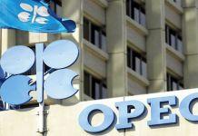 Kyari appointed Nigeria's OPEC representative