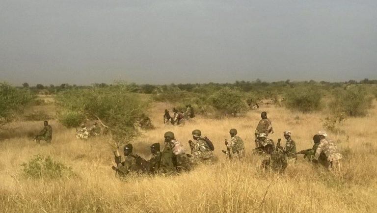 Boko Haram terrorists kill 20 loggers