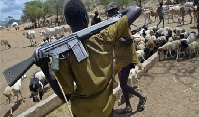 Fulani chief urges FG to disarm herdsmen in Jigawa