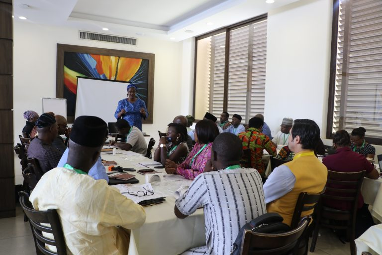 Experts harp on using data for effective healthcare delivery in Nigeria