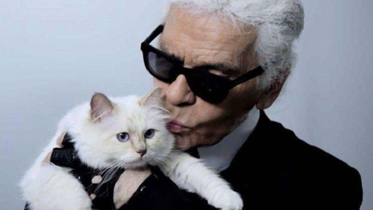 Late fashion designer Karl Lagerfeld's cat to get '$200m fortune'