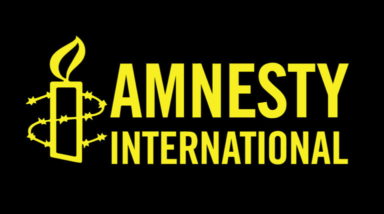 Nigerian police, military, SSS arbitrarily harassing, arresting journalists, bloggers – Amnesty Int'l