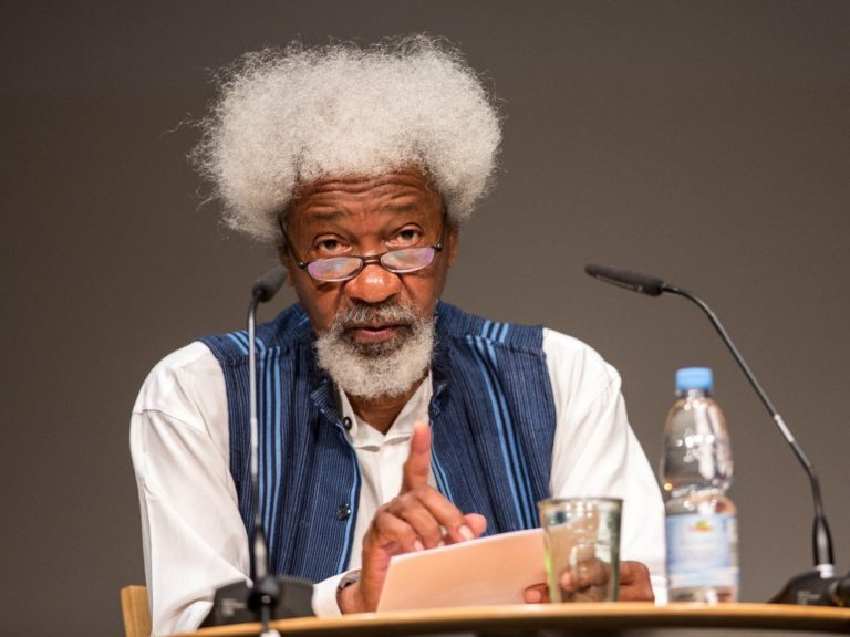 Soyinka to Nigerian youth: Start organising yourselves ahead of 2023 elections