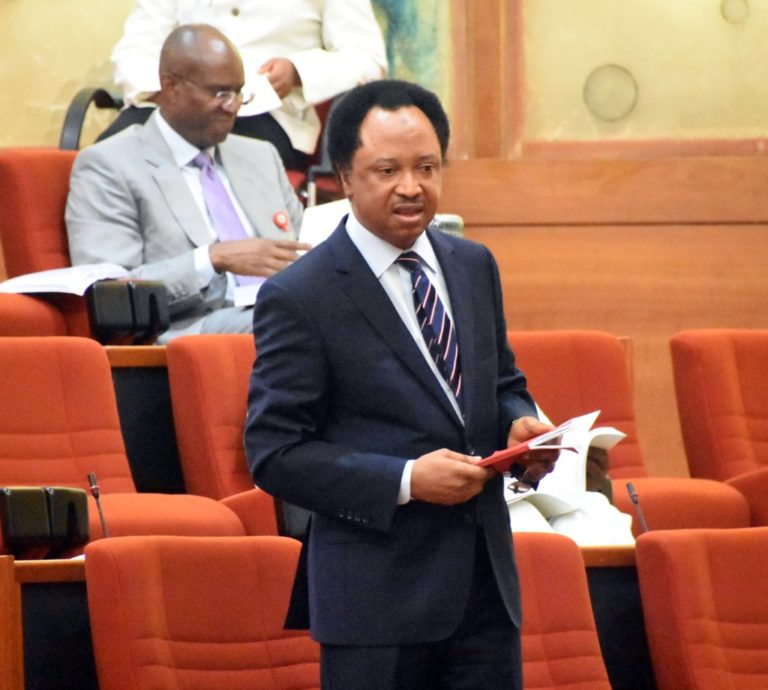 INEC responds to Shehu Sani's accusation of plans to subvert justice at tribunal