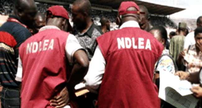 NDLEA intercepts 100,000 bottles of codeine syrup at Onne Port – Spokesman