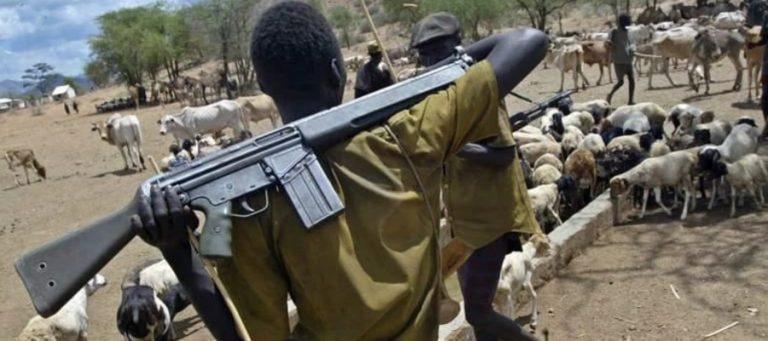 Herdsmen/Farmers Crisis: Adamawa Govt inaugurates livestock transformation committee