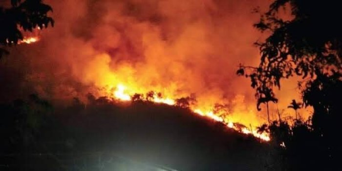 Russia wildfire engulfs over 165,000 hectares of forest