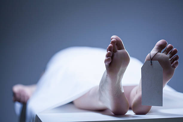 Minister dies after falling from 8-storey office building