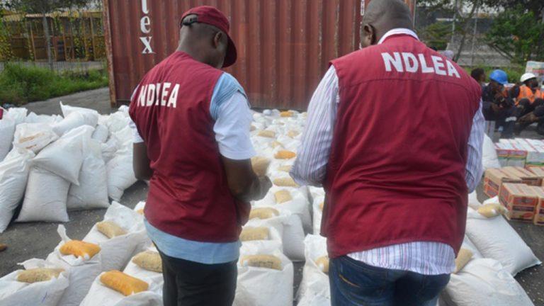 NDLEA intercepts75.8kg of cannabis in Ondo, Rivers
