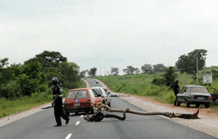 Police-Roadblocks-1