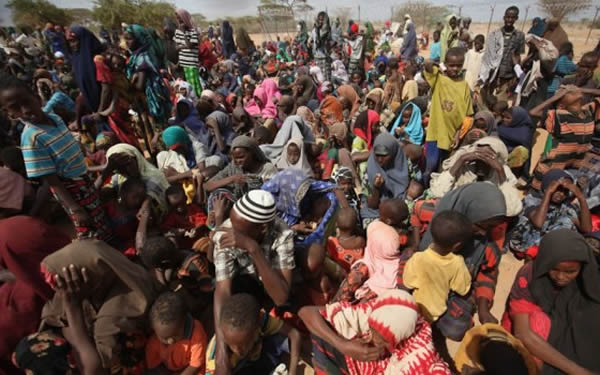 Bandits displace 4,030 persons in Niger – NSEMA