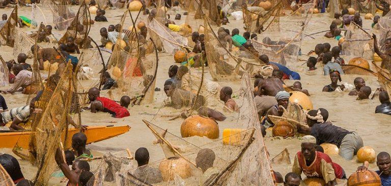 Kebbi govt to resuscitate Argungu fishing festival, injects N650million