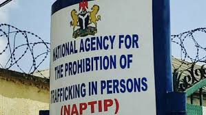 NAPTIP rescues 34-year old lady from Lebanon