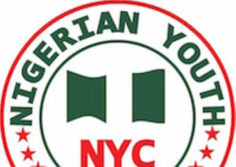 Group lauds Nigerian govt over N75bn investment fund for youth