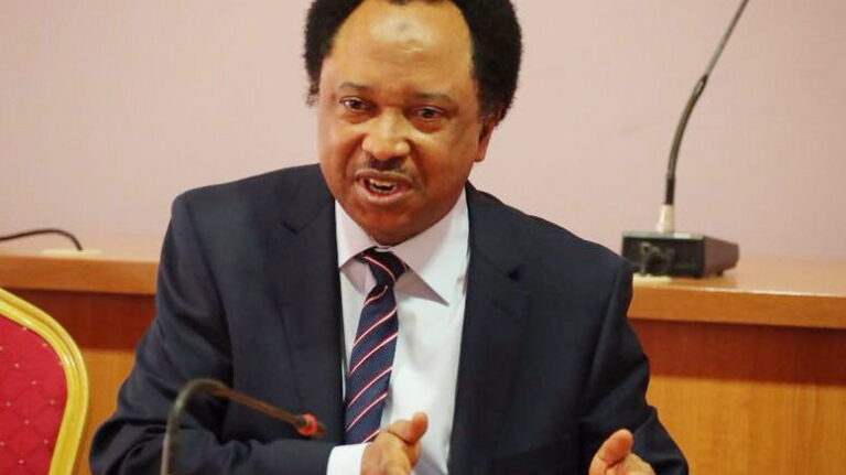 Buhari govt focusing on Kanu, Igboho, ignoring banditry – Shehu Sani