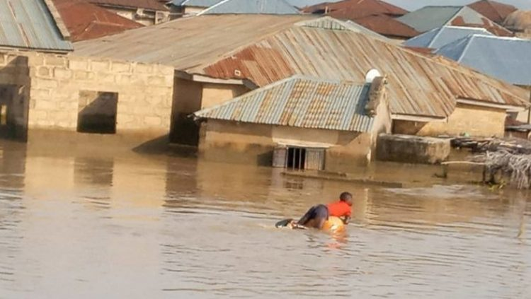State governors not doing enough to tackle flooding, FG laments