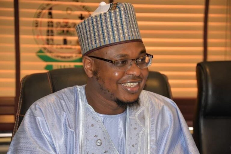 Counting the gains in Nigeria's derive for Digital Economy, by Mohammed Modu