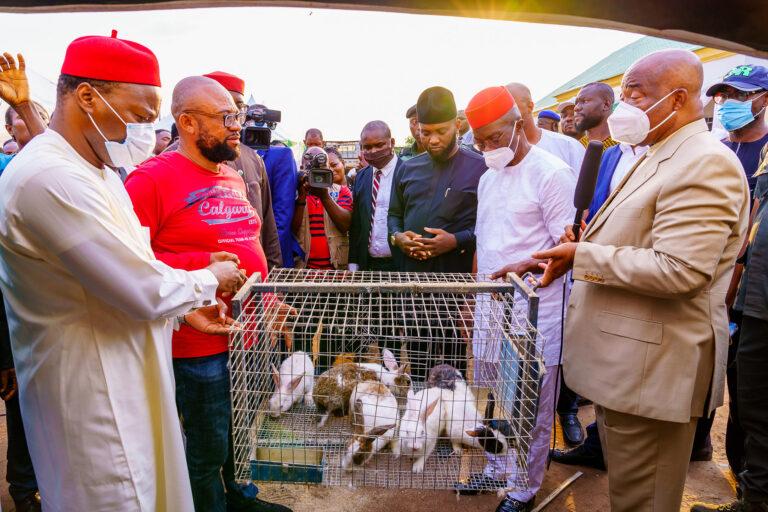 Imo governor, Hope Uzodinma, launches rabbits empowerment scheme