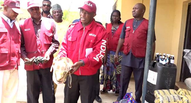 NDLEA seizes over 11,000kg of illicit drugs, arrests 174 suspects in Kogi