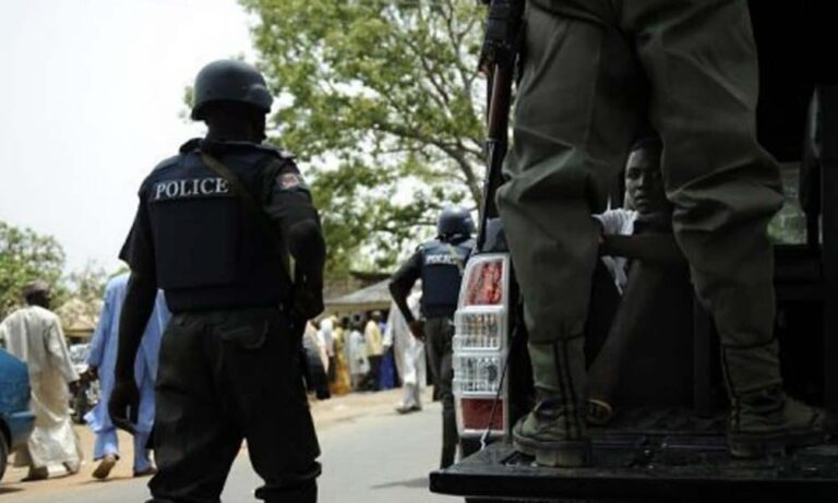 Police arrest 259 suspects over terrorism, kidnapping culpable homicide in Niger