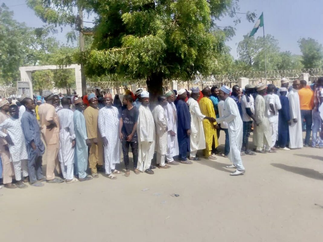 Turnout at Yobe Local Government election