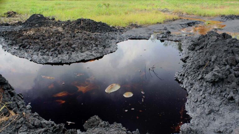 Pollution: Court orders Kano coy to pay N5m to host community as compensation