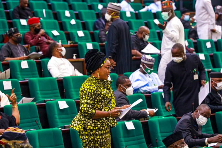 Bill to reserve 1 female senatorial seat per state for 2nd reading