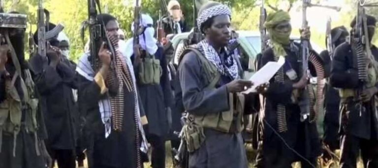 Boko Haram/ISWAP terrorists gripped by fear, reduced to video propagandists – Nigerian Army
