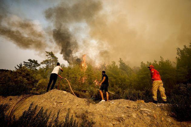 Turkey probes social media plea for international aid to combat fires