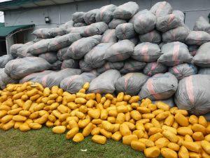 Nigerian Customs intercepts 232 sacks of marijuana worth N1.1bn
