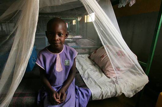 7 Gombe health workers in police net for diverting 5,450 mosquito nets