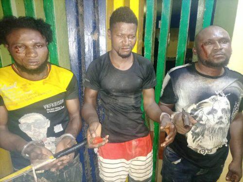 Police arrest 3 armed robbery suspects in Ogun