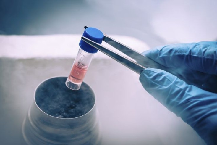 Developing New Treatments Of Tumor Through Understanding Stem Cell Resting Phase