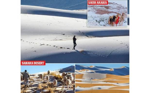 سعودی عرب میں برف باری، تصاویر دیکھ کر لوگوں کو یقین نہ آئے