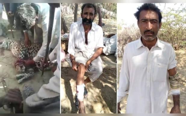 بھارت سے پاکستان میں چیتا گھس آیا، حملے میں آٹھ افراد زخمی