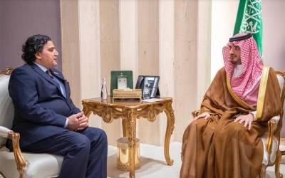 سعودی وزیرداخلہ سے پاکستانی سفیر کی ملاقات، ایسی درخواست کردی کہ ہر پاکستانی داد دینے پر مجبور ہوجائے